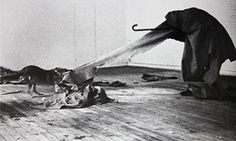 Joseph Beuys and a coyote in his 1974 performance piece I Like America and America Likes Me
