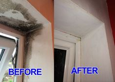 Mold in the house is extremely unpleasant and dangerous issue, as it endangers health in many ways. However, there is a perfectly efficient natural method to eliminate mold. All you need to use is …
