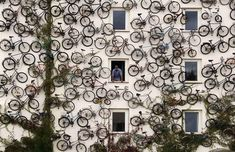 bicycles on a wall.