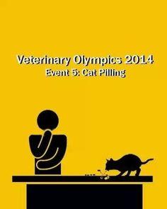 Vet Olympics