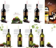 Campania Wine Leaflet 2012 on Behance