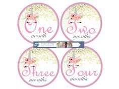 Printable Girl Month Stickers Unicorn Monthly Baby Stickers