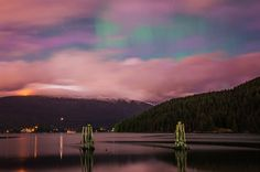 The Aurora Borealis (Northern Lights) Over Vancouver Vancouver City, Northern Lights Canada, Canada Summer, Canadian Culture, Light Images, Lake Park, Best Places To Travel, Amazing Adventures