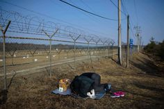Ed Jones - AFP/Getty Images, Jan. North Korean-born Kang Myeong-wook (R) bows with his granddaughter towards the North Korean border at the Demilitarized Zone (DMZ) at Imjingak, Paju, in South Korea's Gyeonggi Province. New Year Holidays, Pictures Of The Week, Korean War, Lunar New, Nbc News, North Korea, Images, Photos, Places To Visit
