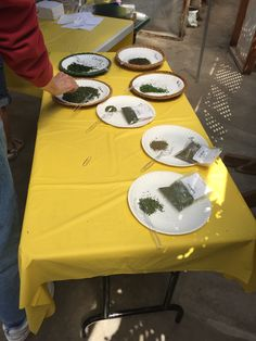 Herb Cooking Class,