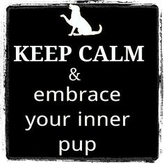 """""""Go fetch your puptail and pup hood.join me for some kinky pup play today. Ddlg Little, Dom And Subs, Keep Calm Quotes, Puppy Play, Dominatrix, Submissive, Mistress, Kinky, Animals And Pets"""
