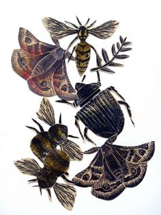 Linoprint and wax Insect collage by Mangle Prints, via Flickr