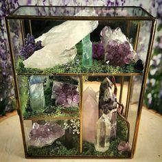 Terrarium Healing Crystals Terrarium Kit Glass Terrarium