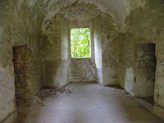 Ruiny pałacu Tarłów
