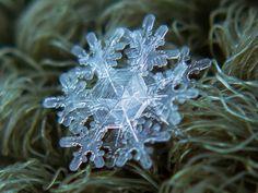 Los geométricos copos de nieve de Alexey Kljatov