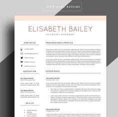 What Does A Professional Resume Look Like Professional Resume Templatelevsresumes On Graphicsauthor .