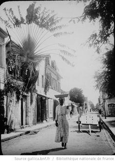 Martinique. Une rue Est-Ouest à Fort-de-France (Déc. 1894) / [photogr.] Salles ; [photogr. reprod. par Molténi?] - 1