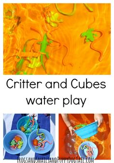 Critter and Cubes- w