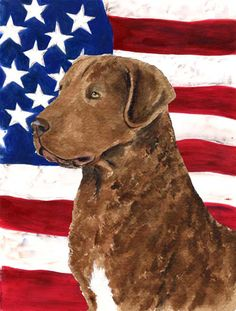USA American Flag with Curly Coated Retriever Flag Canvas House Size