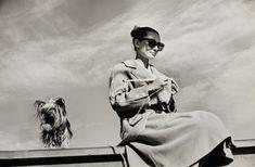 Одри Хепберн и Мистер Фэймос в Мексике во время съемок фильма «Непрощенная», февраль 1959 г.   Источник: https://www.adme.ru/tvorchestvo-kino/20-redkih-fotografij-nepodrazhaemoj-odri-hepbern-1108560/ © AdMe.ru