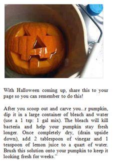 Make your Halloween Jack-O-Lanterns last longer! Holidays Halloween, Halloween Treats, Halloween Pumpkins, Happy Halloween, Halloween Decorations, Halloween Party, Halloween Quotes, Halloween Stuff, Halloween Halloween