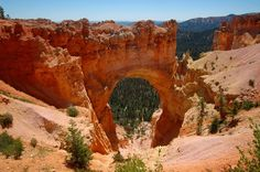 Un viaggio americano: I pinnacoli del Bryce Canyon National Park