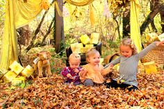 New Children's book about the color GOLD! it's amazing! use coupon code GOLDPREORDER to get 25% off from now until 11/20 #acollectionofcolors #goldbook
