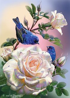 Roses and Blue Birds - Counted Cross Stitch Patterns - Printable Chart PDF Format Needlework Embroidery Crafts DIY DMC color Flower Wallpaper, Bird Art, Beautiful Roses, Belle Photo, Blue Bird, Flower Art, Amazing Art, Art Drawings, Artwork