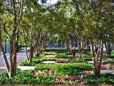 Miller Garden Photo by Charles Birnbaum::2006::The Cultural Landscape Foundation View album