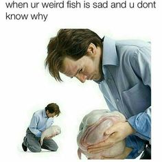 When ur weird fish is sad and you don't know why