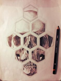 I like the idea of drawing inside the hexagon, but I wouldn't do a skull or anything like it.