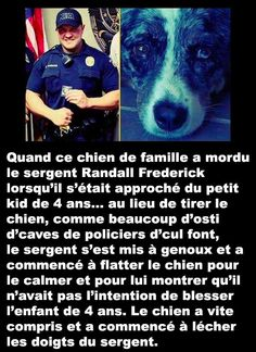 ♡♡♡♡♡♡ya pas que des co**** dans la vie mais ils restent très rare [post_tags Animals And Pets, Cute Animals, Amor Animal, World Problems, Real Facts, Faith In Humanity, True Stories, Funny Memes, Told You So