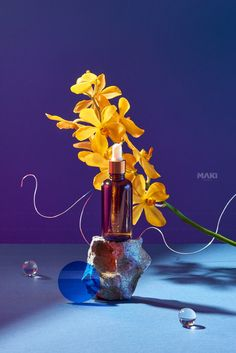 Sunset Photography, Still Life Photography, Creative Photography, Surreal Artwork, Cosmetic Display, Ads Creative, Instagram Design, Organic Oil, Bottle Art