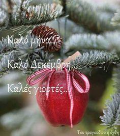 Mina, New Month, Diy And Crafts, December, Seasons, Plants, Christmas, Winter, Xmas