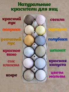 We love dying eggs for Easter such a wonderful and fun tradition. Here is a great post exploring natural dyes to dye your eggs with. I love this post, not just because it is all about naturally dyed eggs, but… Easter Crafts, Holiday Crafts, Holiday Fun, Holiday Photos, Easter Egg Dye, Hoppy Easter, Natural Dyed Easter Eggs, Easter Bunny, Easter Food