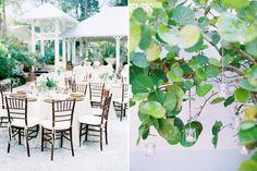 11 destination wedding florida anna maria island film