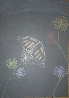 Drawing on black paper, butterfly