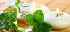 Peppermint herb is richly loaded with nutrients and has number of medicinal benefits. Here are 24 best benefits and uses of peppermint for skin, hair & health. Peppermint Oil For Skin, Peppermint Herb, Peppermint Oil Benefits, Peppermint Plants, Uses For White Vinegar, Tapas, Tea Benefits, Health Benefits, Health Tips