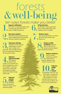 Forests and Well-being