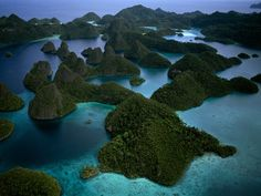 Raja Ampat Islands  Photograph by Jennifer Hayes, National Geographic Stock    The islands of Raja Ampat may well be home to the greatest biodiversity in the world, with almost 600 species of coral, abundant plant life, and unique creatures, such as a shark that walks on its fins and a shrimp that looks like a praying mantis.