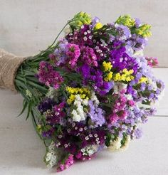 David's Garden Seeds Flower Statice Seeker Mix (Multi Colored) 200 Open Pollinated Seeds ** Remarkable product available now. All Flowers, Dried Flowers, Beautiful Flowers, Wedding Flowers, Cut Flower Garden, Flower Farm, September Flowers, Garden Seeds, Flower Seeds