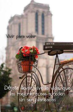 〽️Déjate llevar, vive la vida...