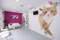 Dog Grooming Salons, Grooming Shop, Pet Grooming, Pet Shop, Dog Hotel, Cat Signs, Pet Clinic, Veterinary Medicine, Backyard For Kids