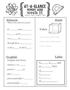 Cycle 3 At-A-Glance Memory Worksheets PDF