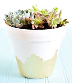 DIY Gilded Succulent Planter (great gift for Mom!) - Get the steps >>