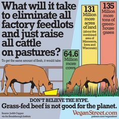 What will it take to eliminate all factory feedlots?