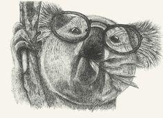 https://flic.kr/p/DeMutQ | Mr Coala #coala#animals#drawing#glasses by Leo Bellei