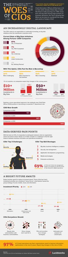 The Woes of the CIOs #infographic #Business #BigData