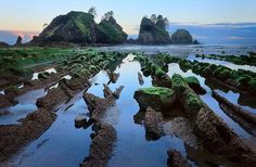 Shi Shi Beach and Point of the Arches, Olympics Coast, 8.0 miles, 200 ft. elevation gain. Inge Johnsson's photo of Point of Arches took 2nd prize in WTA's Northwest Expsoure Photo Contest in 2008.