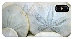 Sanddollars IPhone X / XS Case featuring the photograph Sand Dollars From The Pacific by Mg Blackstock Sand Dollars, Phone Covers, Seashells, Fine Art America, Samsung, Throw Pillows, Iphone, Prints, Photography