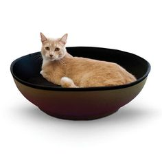 K&H Manufacturing Mod Half-Pod for Pets, Gray/Black Large enough for any cat Unique bowl design for comfort Rugged 600 Denier polyester exterior Plush lycra interior with removable, washable pillow One year limited warranty Heated Cat Bed, Dog Stroller, Indoor Pets, Best Dog Training, Cat Supplies, Doge, Cat Toys, Best Dogs, Kitty