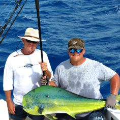 Large dolphinfish landed by Charterboats Linda D V Sportfishing