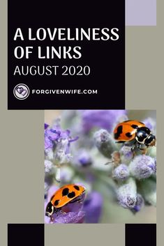 Let these lovely links help you grow!