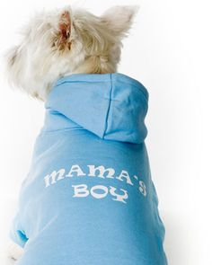 Blue Mama's Boy Dog Hoodie Dobby needs this.or rather I guess I need this to put on Dobby LOLOL - Tap the pin for the most adorable pawtastic fur baby apparel! You'll love the dog clothes and cat clothes! Boy Dog Clothes, Small Dog Clothes, Dog Clothing, Dog Hoodie, Dog Shirt, Sweatshirt, Mommys Boy, Boys Hoodies, Training Your Dog