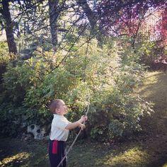Mi pequeño explorador no se anda por las ramas #reto21disfrutarconellos #jugaresesencial #mipreciosoJuan